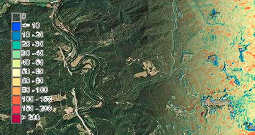Cataluña dispone de los primeros mapas de alta resolución de sus bosques